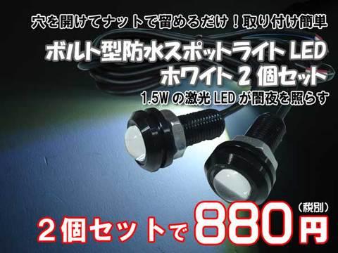 ボルト型防水スポットライトLEDホワイト2個セット