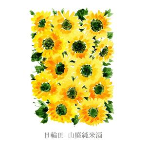 夏酒 日輪田 山廃純米酒 720ml