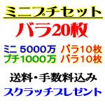 バラ20枚・ミニ+プチ