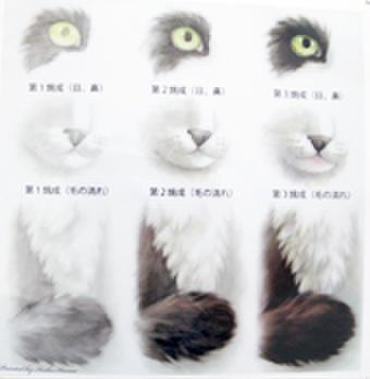 絵付テキストNo.21【動物の細部の描き方】毛並み、目、鼻