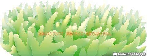 ミドリイシ/エダサンゴ イラスト Adobe Ai形式/eps形式/ (CMYK)