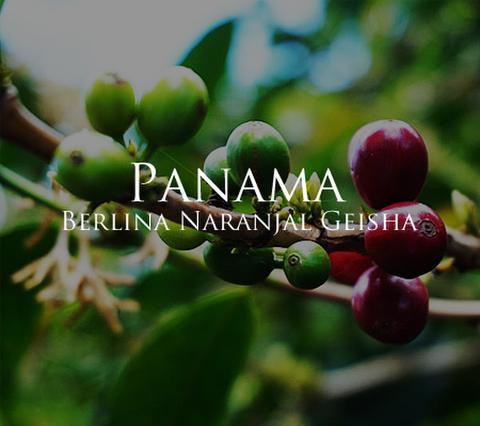 パナマ ベルリナ農園 ナランハル ゲイシャ 200g