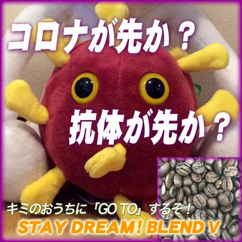 STAY DREAM-V