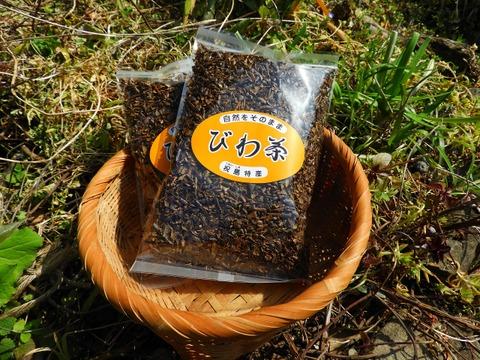 祝島のビワ茶