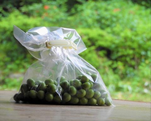 自然農のグリーンピース 生(鞘なし)100g