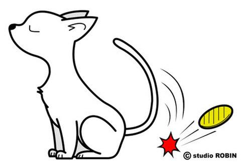 ★猫に小判★PRO-003