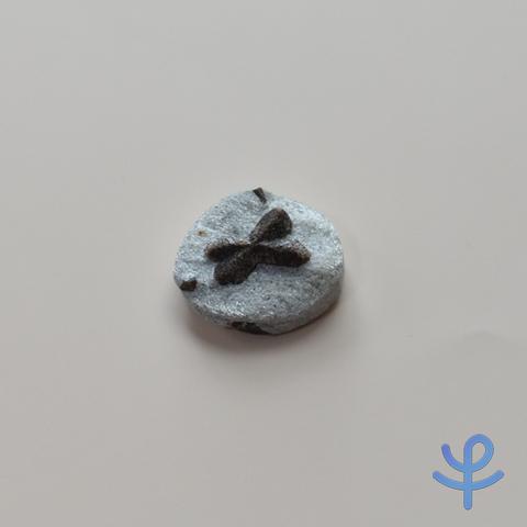 【原石】スタウロライト(十字石)