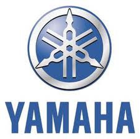 【電動アシスト専用・アルミ鍛造ショートクランク左右セット】YAMAHA【152mm】アルミシルバー・コッタレスキャップ付属【納期2~5日】