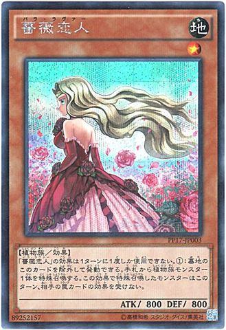 薔薇恋人 (Secret)3_地1