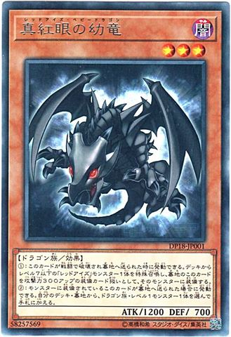 [R] 真紅眼の幼竜 (3_闇3/DP18-JP001)
