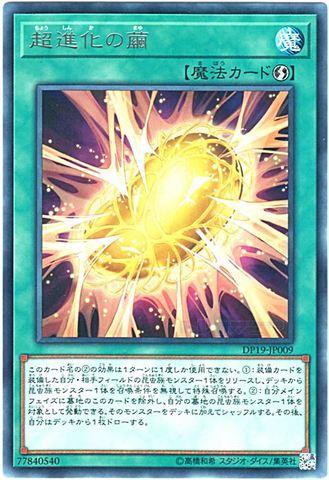 超進化の繭 (Rare/DP19-JP009)1_速攻魔法