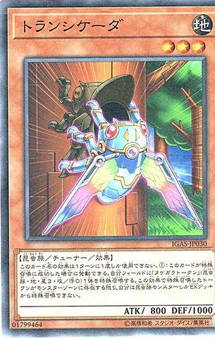 [N] トランシケーダ (3_地3/IGAS-JP030)