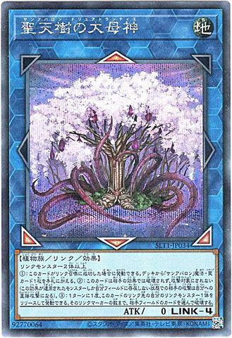 [Secret] 聖天樹の大母神 (8_L/地4/SLT1-JP034)