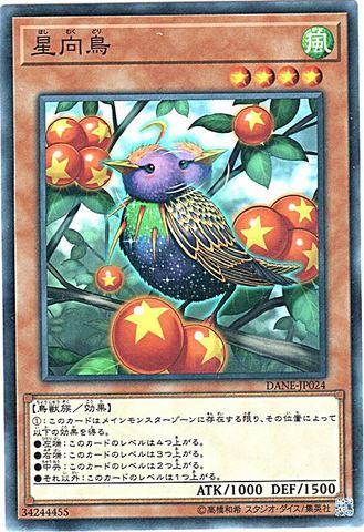 [N] 星向鳥 (3_風4/DANE-JP024)