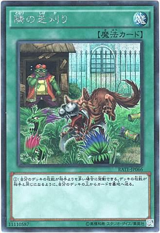 隣の芝刈り (Secret)1_通常魔法