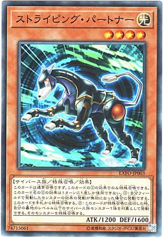 [N] ストライピング・パートナー (3_光4/EXFO-JP003)