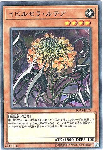 [N] イビルセラ・ルテア (3_地4/IGAS-JP027)
