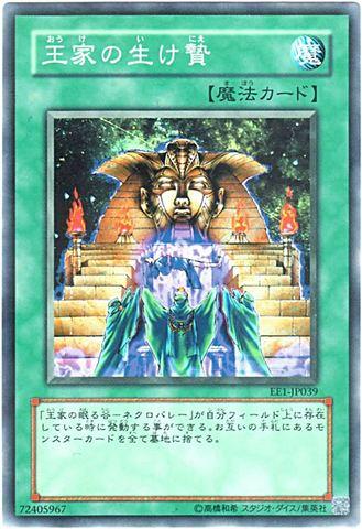 王家の生け贄 (Normal)1_通常魔法