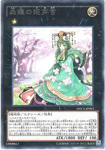 [R] 森羅の姫芽宮 (6_X光1/DOCS-JP083)