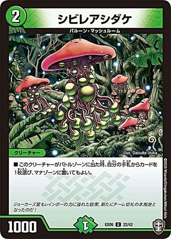 【売切】 [UC] シビレアシダケ (EX09-22/自然)