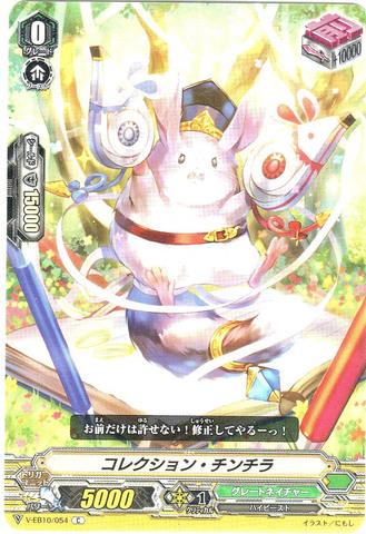 コレクション・チンチラ C VEB10/054(グレートネイチャー)