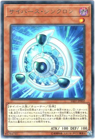 サイバース・シンクロン (Rare/SAST-JP002)3_闇1