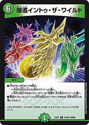 【売切】 [R] 爆進イントゥ・ザ・ワイルド (EX01-40/自然)