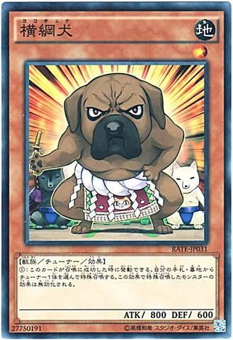 [N] 横綱犬 (3_地1/RATE-JP031)