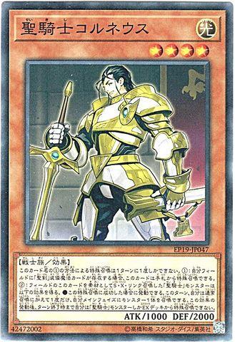 聖騎士コルネウス (N/EP19-JP047)3_光4
