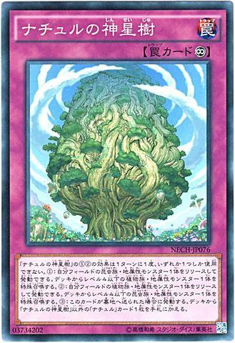 ナチュルの神星樹 (Normal/NECH)蟲惑魔2_永続罠