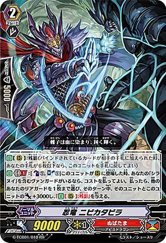 忍竜 ニビカタビラ RR GTCB01/010(ぬばたま)