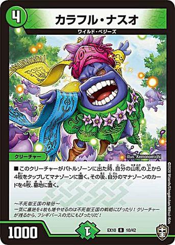 【売切】 [R] カラフル・ナスオ (EX10-10/自然)