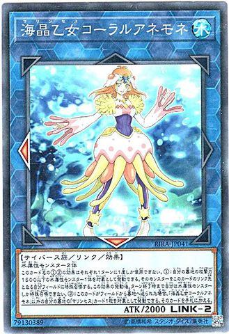 [N] 海晶乙女コーラルアネモネ (8_L/水2/RIRA-JP041)