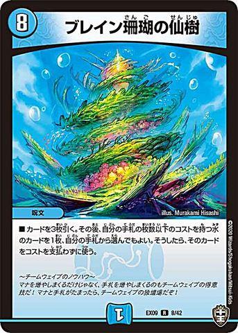 【売切】 [R] ブレイン珊瑚の仙樹 (EX09-08/水)