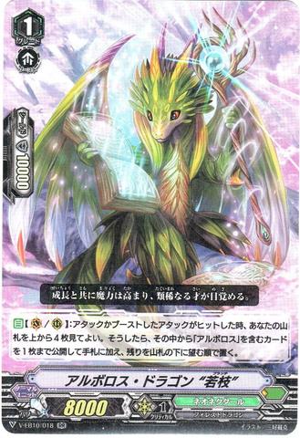 """アルボロス・ドラゴン """"若枝"""" RR VEB10/018(ネオネクタール)"""