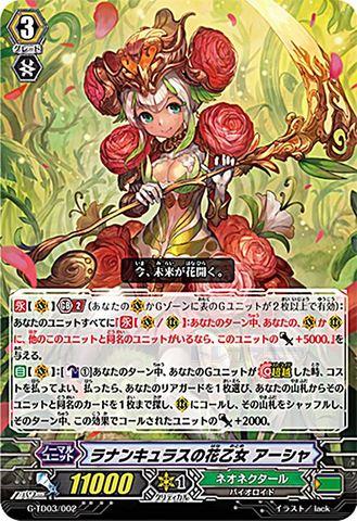 ラナンキュラスの花乙女 アーシャ(C仕様) GTD03/002(ネオネクタール)