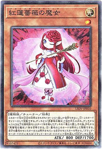 [N] 紅蓮薔薇の魔女 (・LIOV_3_光1/LIOV-JP010)