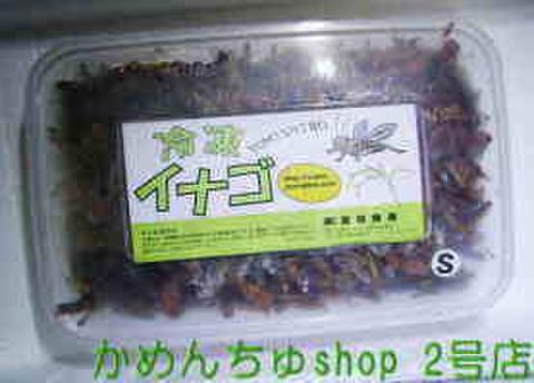 【冷凍は代引・振込銀行限定】冷凍いなご(S)200g