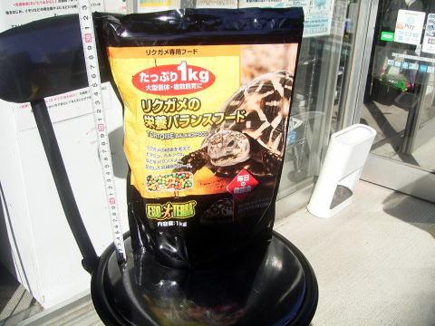 GEX リクガメの栄養バランスフード 1kg