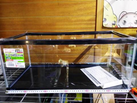 GEX マリーナガラス水槽600 Low(60サイズ水槽高さ26cm)
