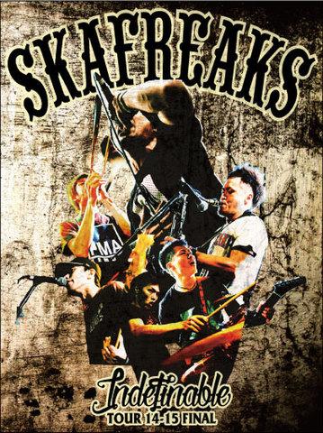 SKA FREAKS DVD Indefinable TOUR 14-15 FINAL