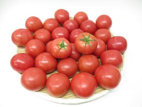 トマト 4kg 税込・送料無料・代引手数料無料