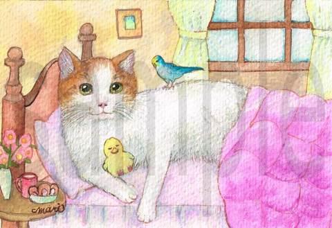 【原画】ほんわか猫のねどこ~ゆるやかな時間~【ポストカードサイズ】