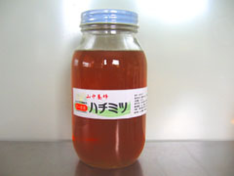 はちみつ・7~8月の花・1100g(千葉県富津市山中産)