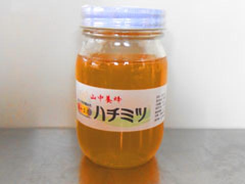 はちみつ・4~5月の花・500g(千葉県富津市山中産)